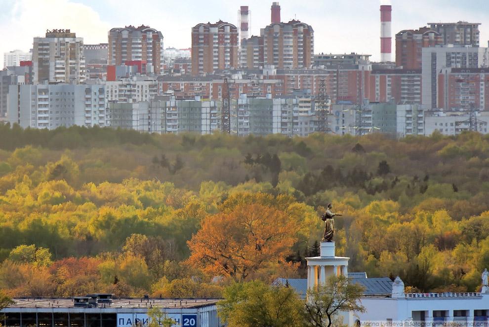 11. Москвариум .