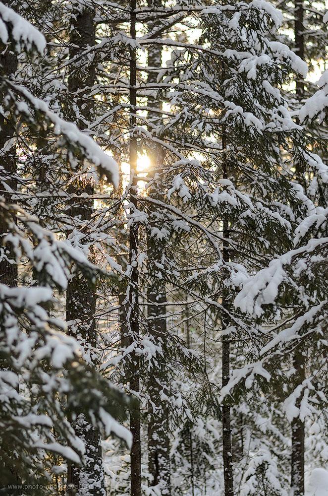 Фото 1. Куда поехать на машине в Челябинской области зимой? В парк Таганай. Камера Nikon D5100 body. ОбъективNikon50mm f/1.8G AF-S Nikkor.Настройки, использованные при съемке: выдержка 1/1000 с, диафрагмаf/2.8,ISO200, фокусное расстояние 50 мм.