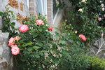 Розы у окошка Башни