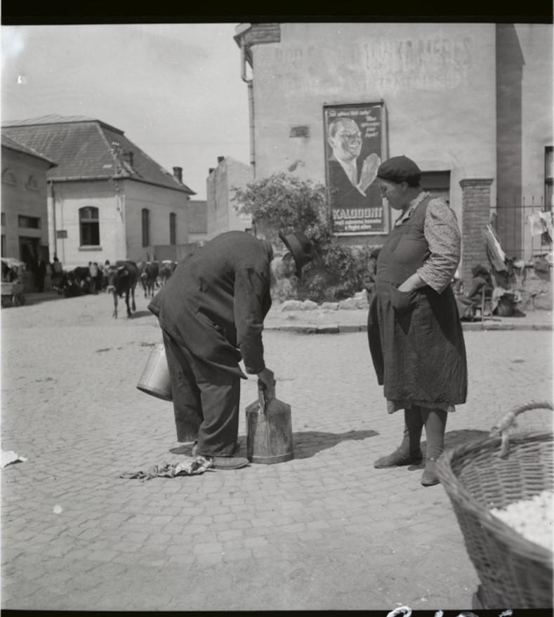 Ежедневные события на главной улице - стадо коров, продавец молока, женщина-торговец
