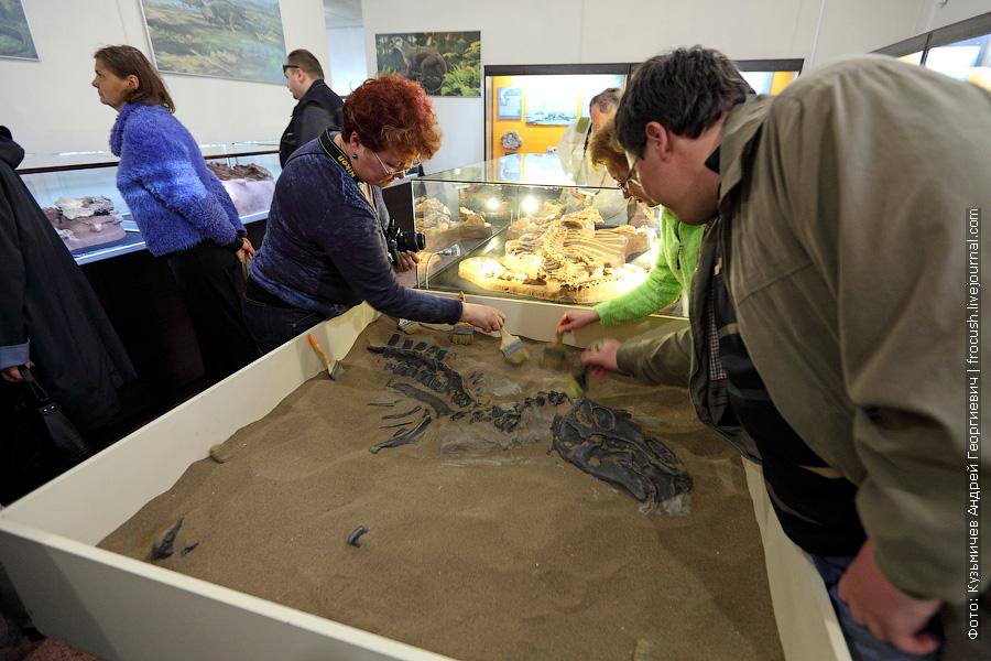 песочница с костями динозавра