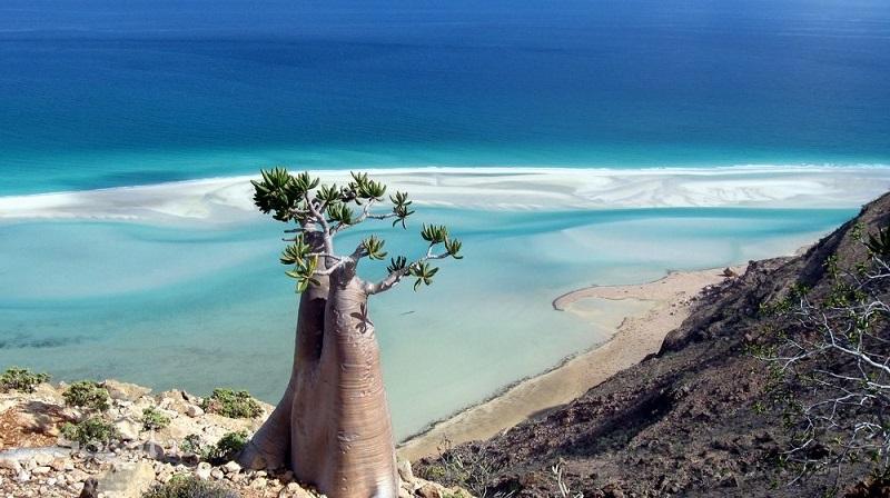 Остров счастья Сокотра