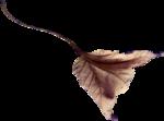NLD Freebie Leaf.png