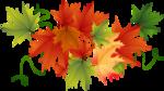 Осень26