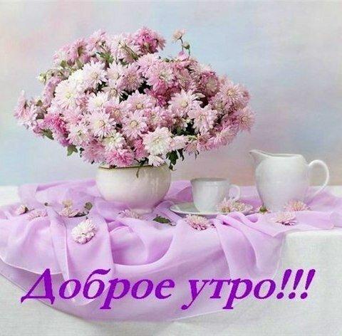 Красивые открытки с добрым утром с цветами