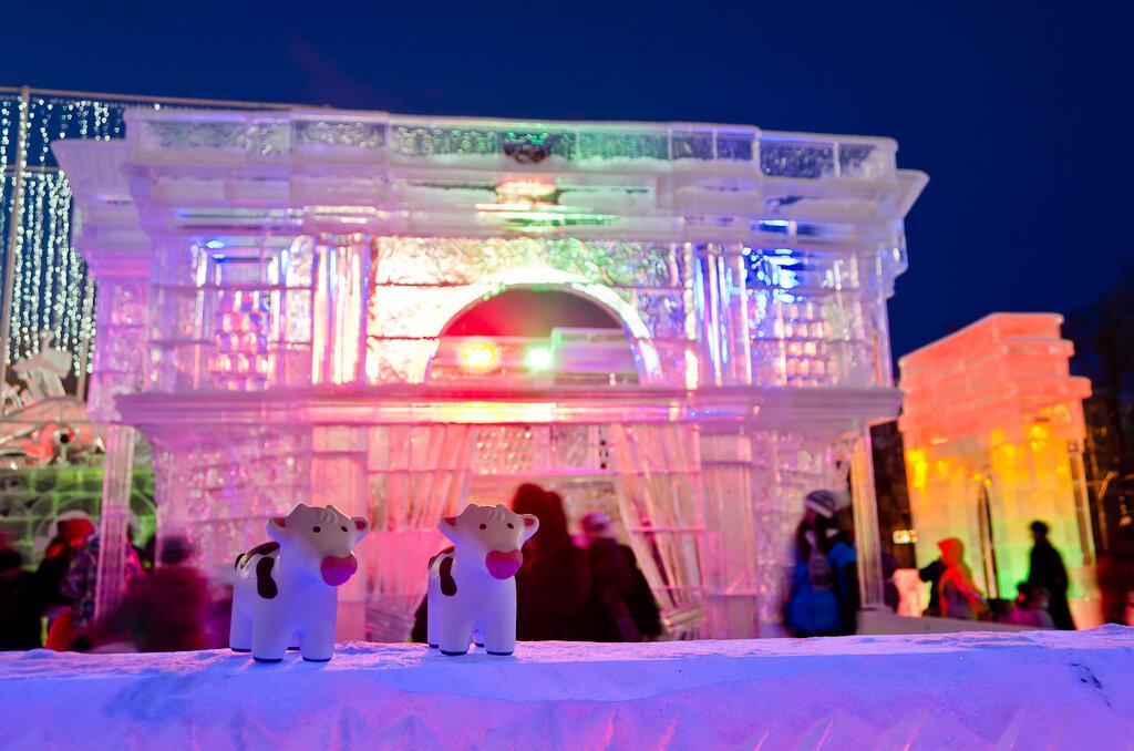 На ледовый городок приходит очень много горожан. Очень трудно снять кадр, чтобы на заднем плане кто-нибудь не появился. Фото с Nikon D5100 KIT 18-55