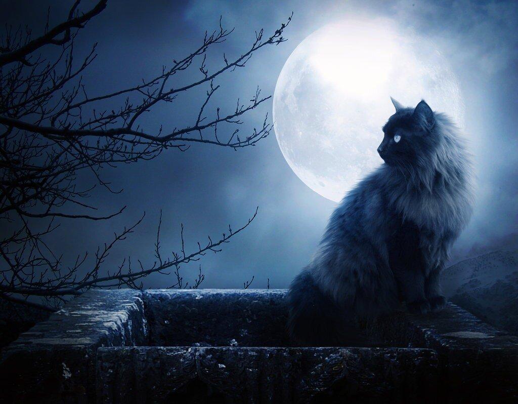 Супер Луна сегодня