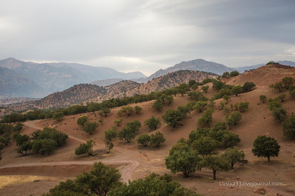 Иран, Горы Загрос