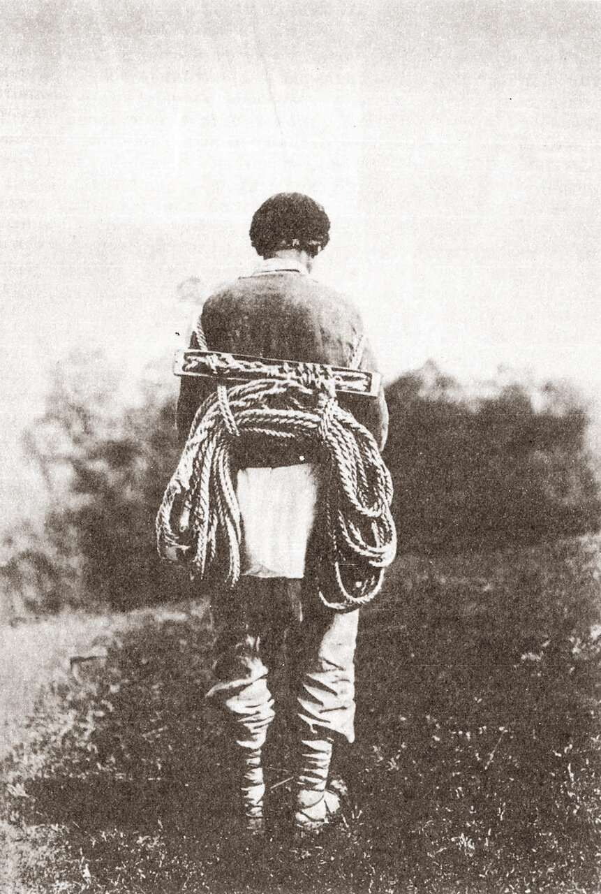 Белорусское лезвие (приспособление для сбора меда)