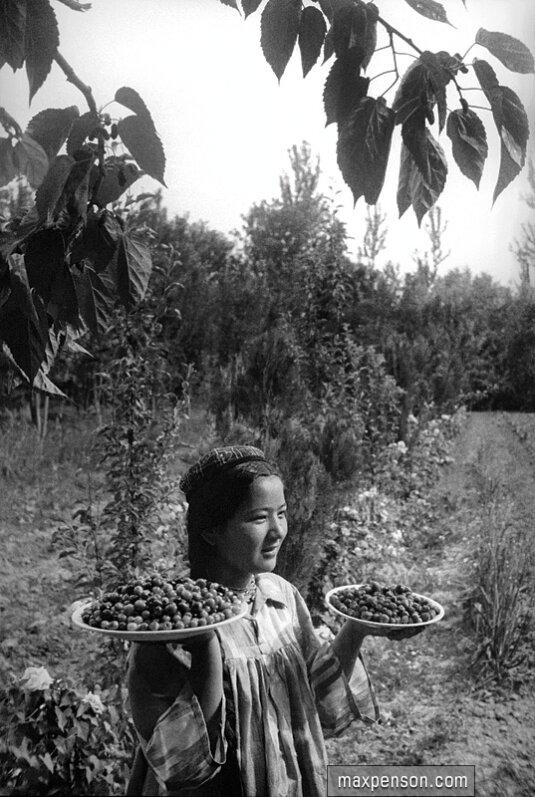 Девушка-узбечка в саду с блюдами (ляганами) фруктов