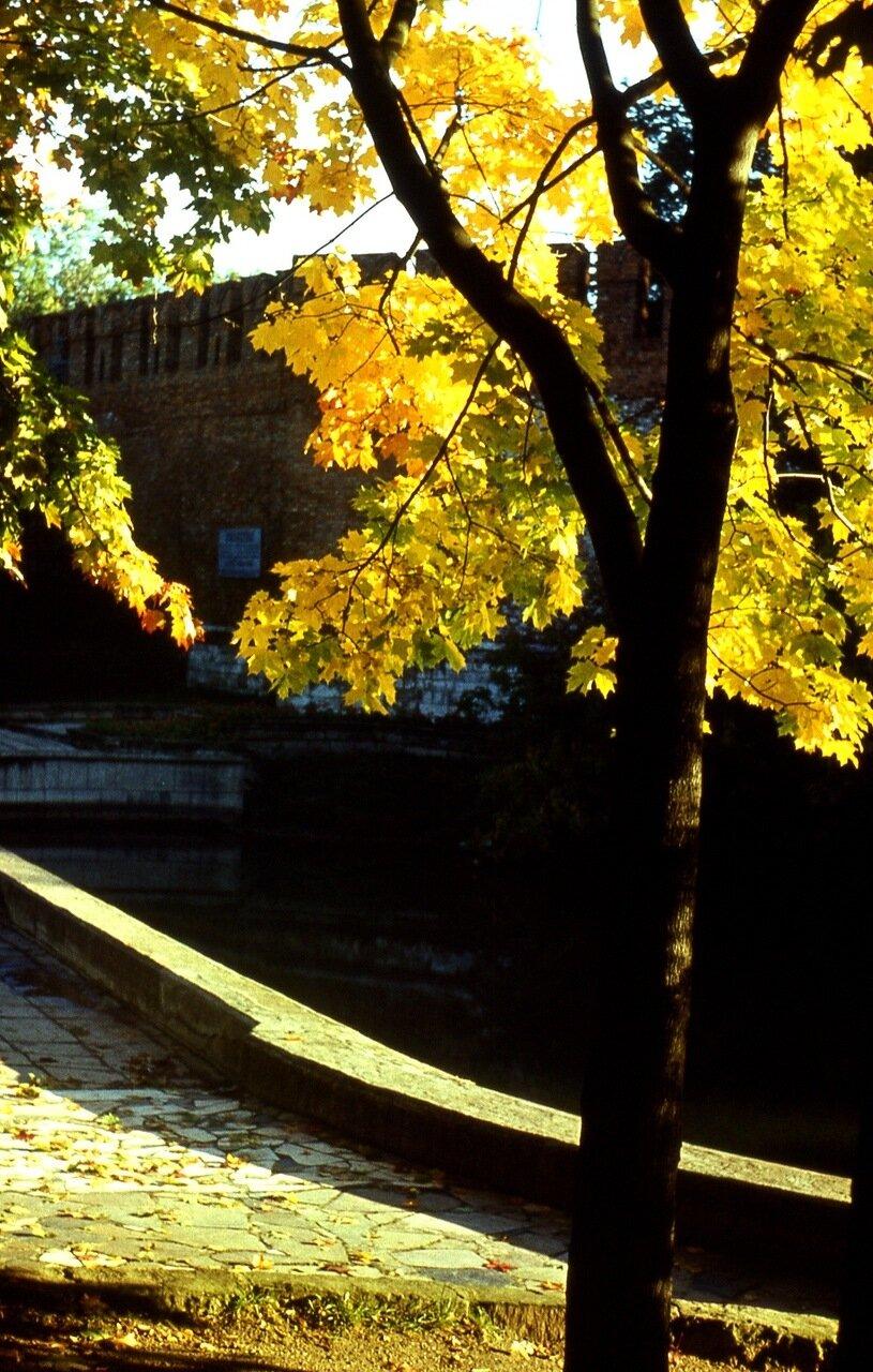 15.  Золотая  осень