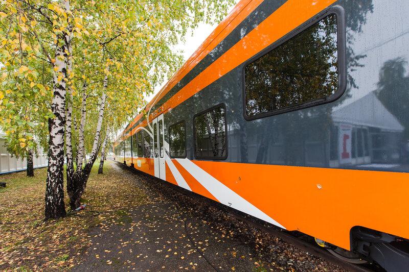 Autumn Colors in Railway