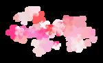 Palvinka_FlowerEssence_flowers2.png
