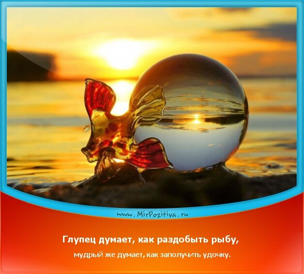 позитивчик дня: Глупец думает, как раздобыть рыбу, мудрый же думает, как заполучить удочку.