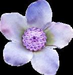 Lavender Paradise (88).png