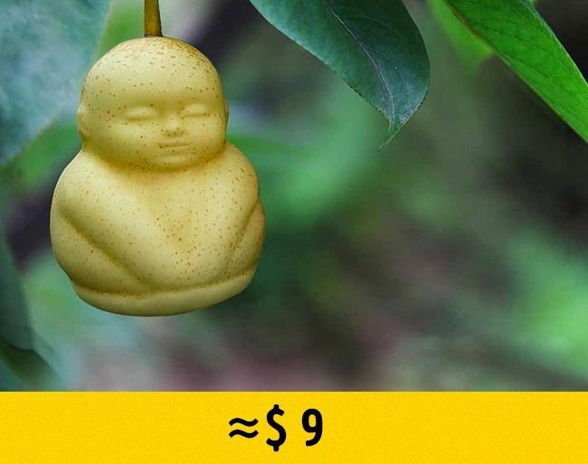 © Fruit Mould Company/National Geographic  Груши ввиде маленьких Будд имладенцев придумали в