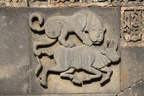 Лев и буйвол