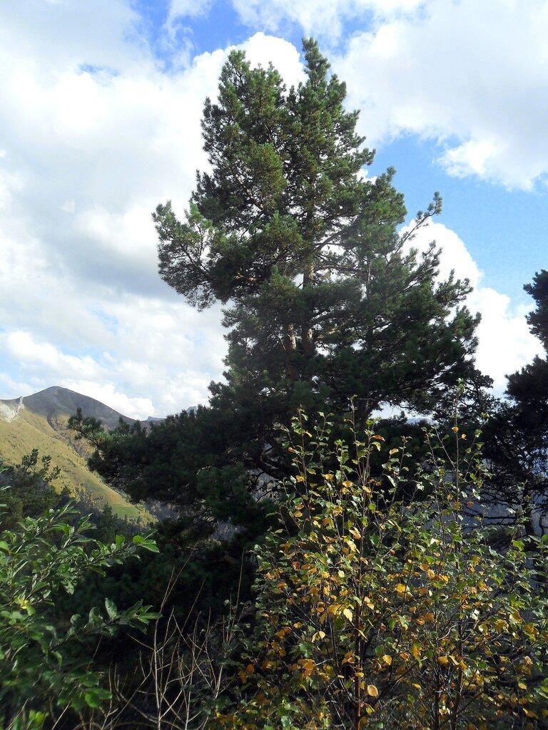 Поход, Большой Тхач, Кавказ,  сентябрь 2012