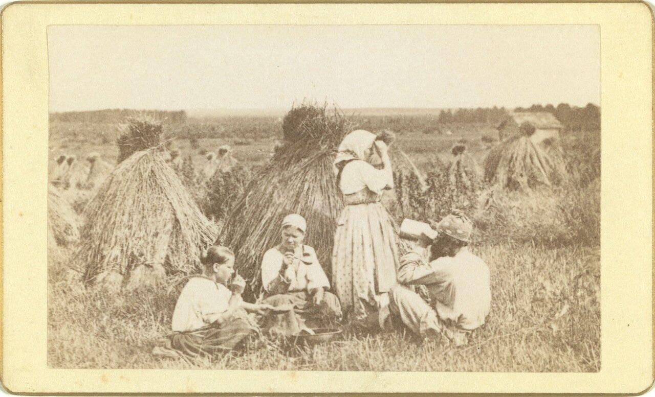 Три женщины и мужчина обедают на пшеничном поле