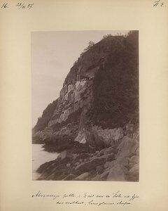 22.6.1887. Гнездовья чаек на Западном берегу