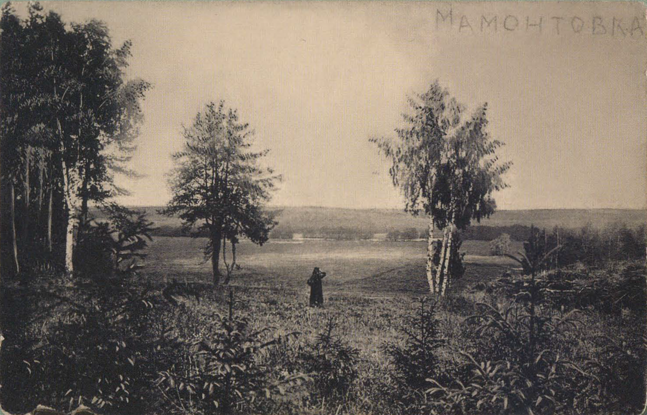 Окрестности Москвы. Мамонтовка