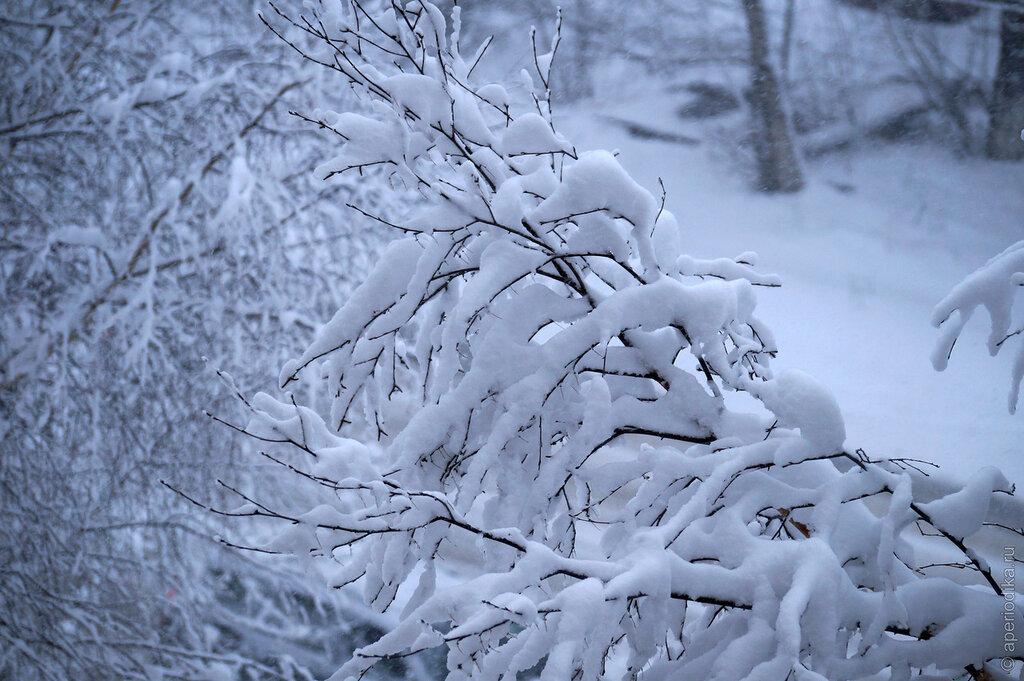 Снежная златоустовская весна