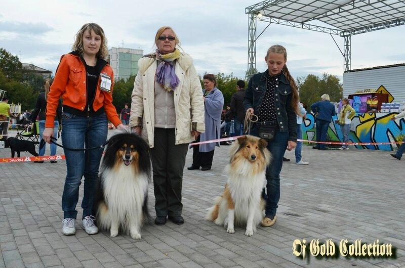 http://img-fotki.yandex.ru/get/9263/134559744.15/0_acc65_9e04444a_XL.jpg