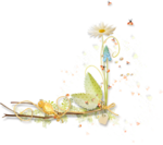camomile (9).png