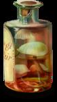 ldavi-paintersfaeries-mushroomelixirpaint3.png