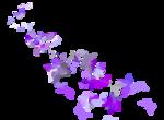 Lavender Paradise (66).png