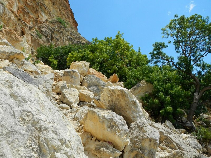 Склоны Фиолента, камни, заросли крымской фисташки