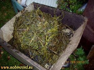 трава для компоста