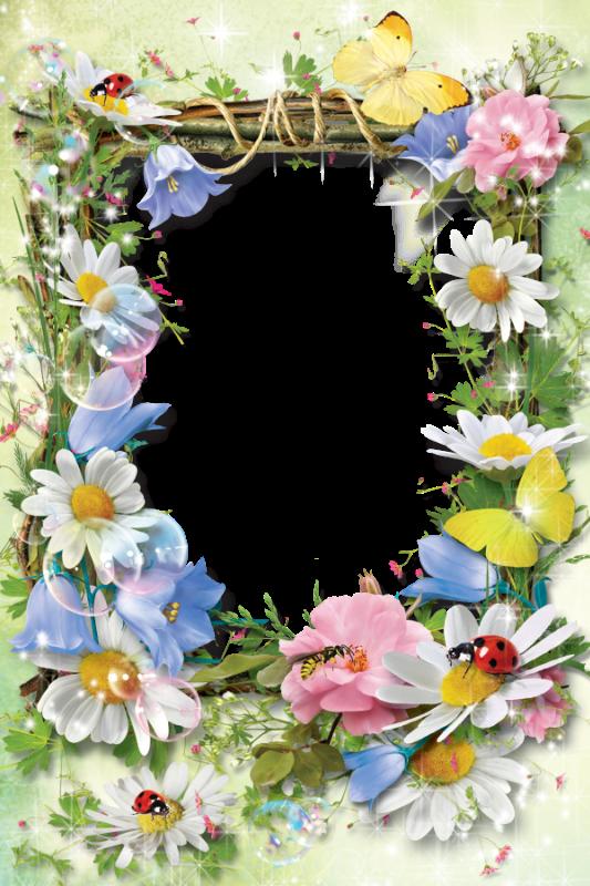 Рамки летние для открытки с днем рождения, поздравление днем