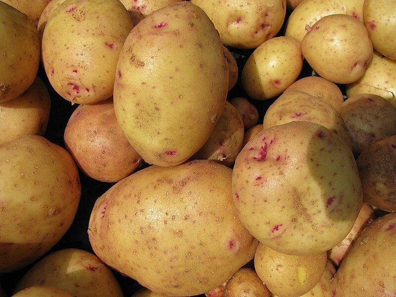 Актуальная в этом году картошечка