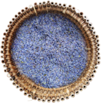 RR_LavenderFields_Element (16).png
