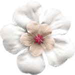 KMILL_flower-real2.png