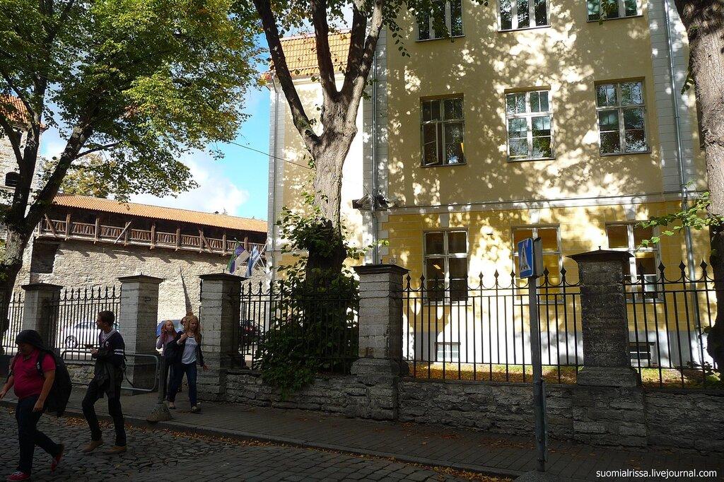 Эстонская школа, теперь гимназия.
