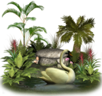 plants_and_rocks_6_by_collect_and_creat-d5t8lpx.png