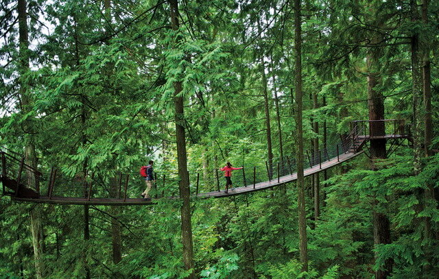Capilano Suspension Bridge Park. Канада