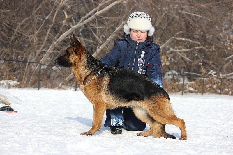 http://img-fotki.yandex.ru/get/9265/134559744.19/0_bb333_d53d0fc7_XL.jpg