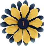 KAagard_Academic_Flower_Layered2_BlueYellow.png
