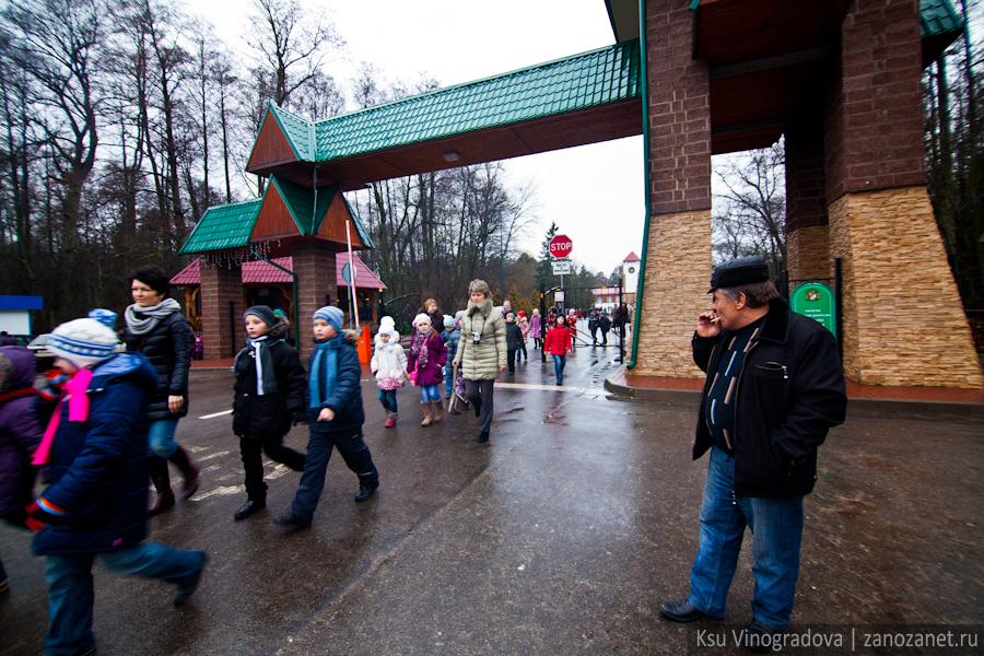 Белоруссия. Беловежская пуща.