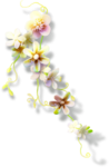 Beautiful-Blossom_birdhouse1 (12).png