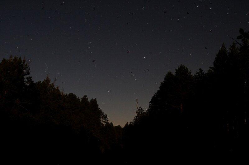 Звёздное небо над рекой Снигирёвкой в проёме между соснами img_7562