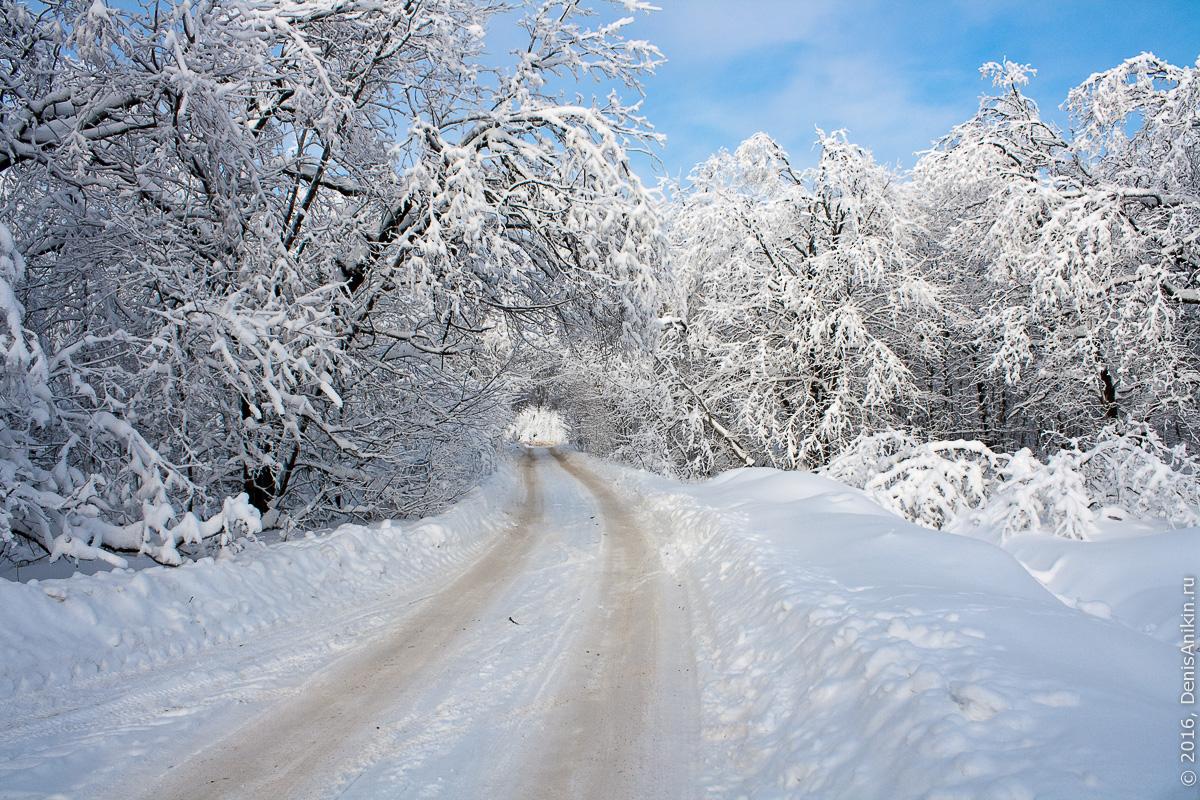 Зима на кумысной поляне 1