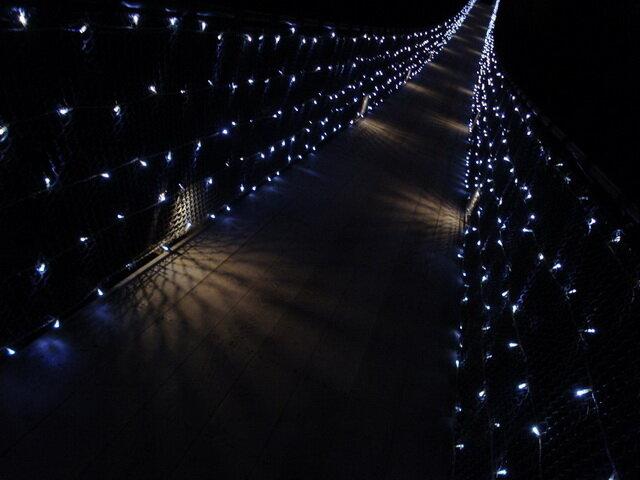 Capilano Suspension Bridge Park. Канада
