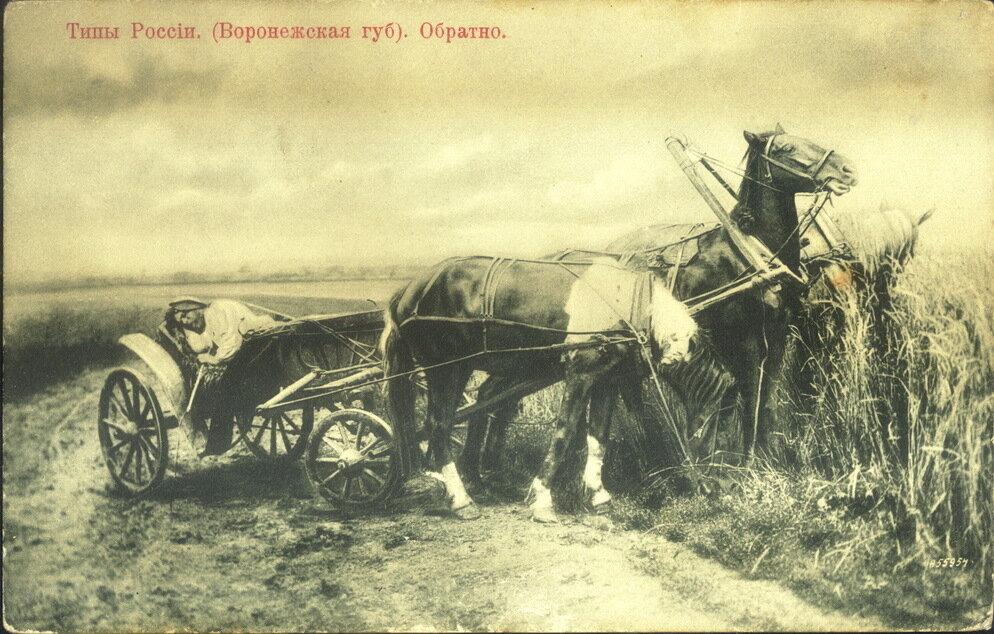 Обратно (Воронежская губерния)