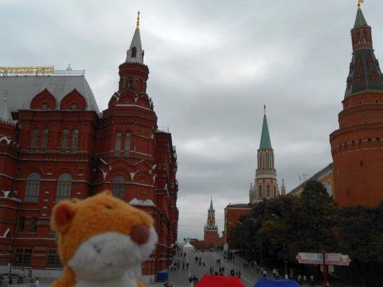 http://img-fotki.yandex.ru/get/9298/136123820.7/0_b85fd_1ea20698_XL.jpg