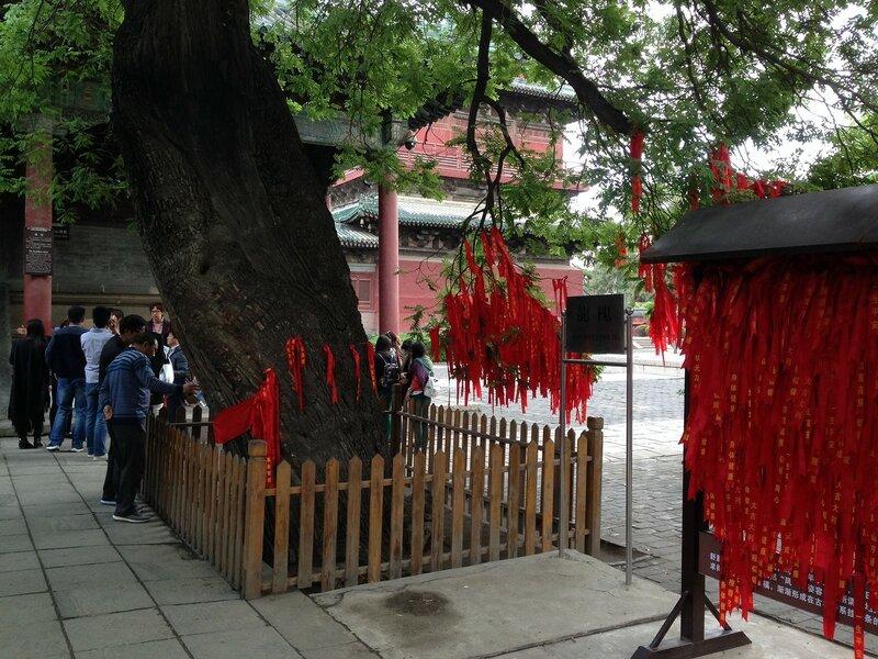 пекин май-июнь 516.JPG