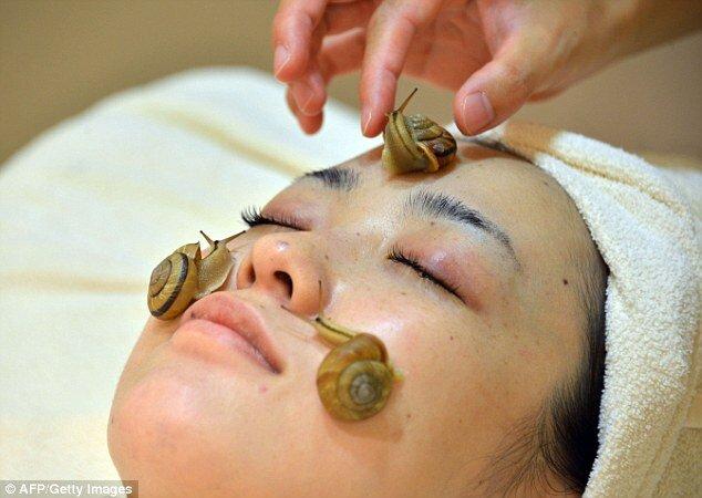 Польза улиток ахатин в косметологии
